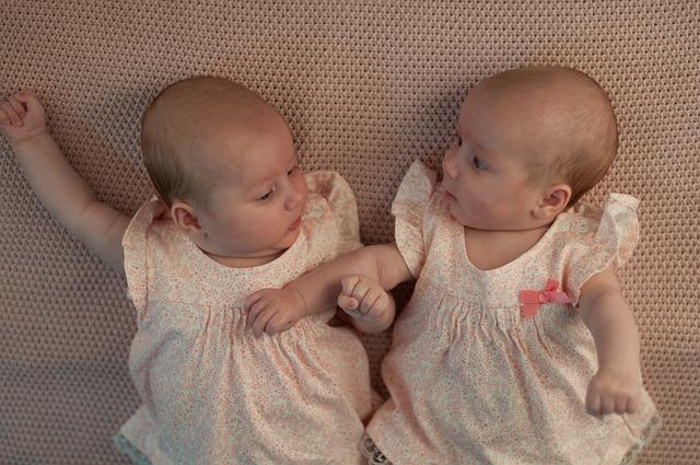 twins-821215_640