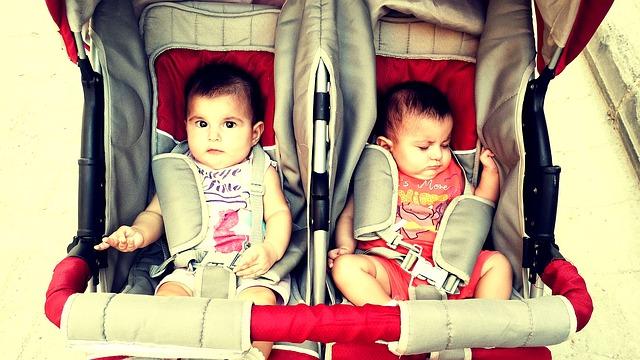 twins-435070_640