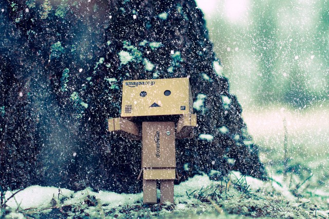 Danbo's_first_snow