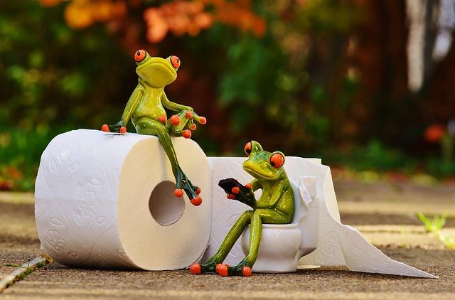 カエルのトイレ